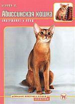 Абиссинская кошка Содержание и уход