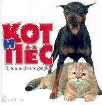 Кот и пес. Лучшие фотографии
