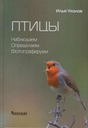 Птицы. Наблюдаем, определяем, фотографируем