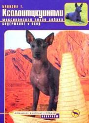 Ксолоитцкуинтли. (мексиканская голая собака) Содержание и уход (цвет.)