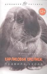 Карликовые кролики. Правила ухода