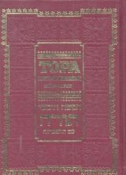 Тора. Пятикнижие и Гафтарот (подарочное издание)