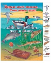 Животные и растения морей и океанов