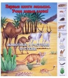 Животные и растения пустыни