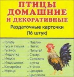 Птицы домашние и декоративные. Раздаточные карточки (16 штук)