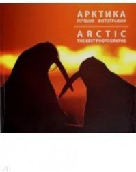 Арктика. Лучшие фотографии