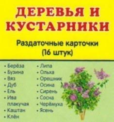 Деревья и кустарники (набор из 16 раздаточных карточек)