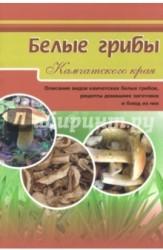 Белые грибы Камчатского края. Описание видов камчатских белых грибов, рецепты домашних заготовок и блюд из них