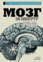 Мозг за минуту
