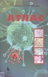 Атлас инфекционных болезней в стоматологии