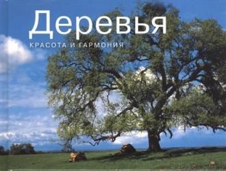 Деревья. Красота и гармония